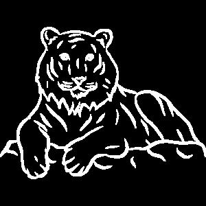Tiger Raubkatze Großkatze Lieblingstier