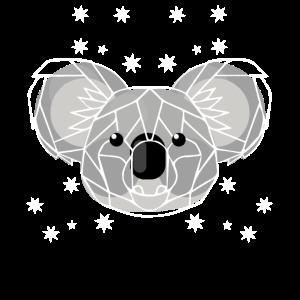 Koala Naturschutz