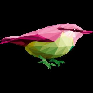 Lustiger Vogel