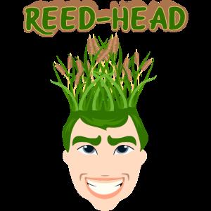 reed-head redhead rote Haare