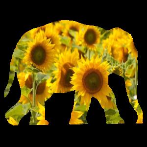 Elefant Sonnenblume Geschenk