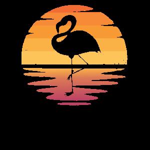 Flamingo Sonnenuntergang