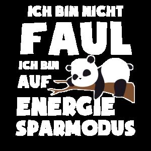 Panda Pandas Pandabär Geschenk