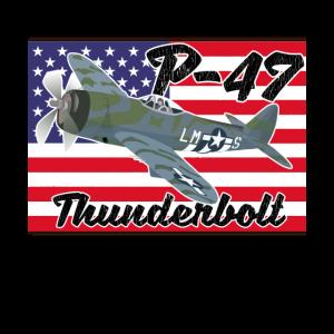 P47 Thunderbolt Aircraft USA Flagge