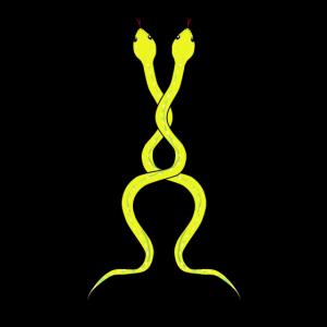 Schlangen Reptilien Zoologie Magisch