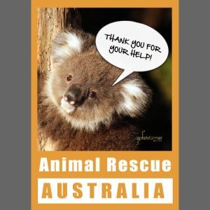 Thank You Koala - Spendenaktion Australien
