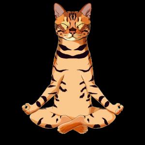Yoga Bengalkatze