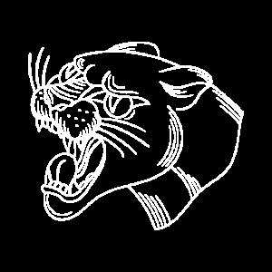 Tiger Raubkatze