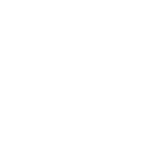 1990 Limited Edition 1990 .../+