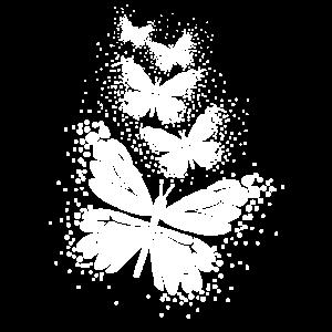 Schmetterlinge in Weiß