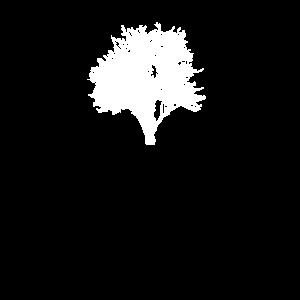 Natur Laubbaum