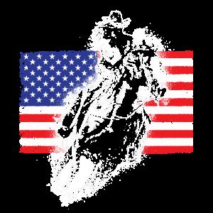 Cowboy Flagge