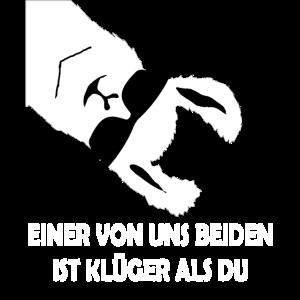 EINER VON UNS BEIDEN IST KLUeGER ALS DU alpaka