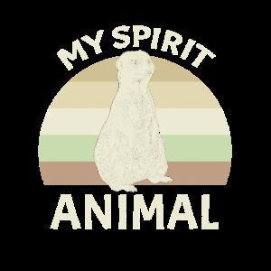Erdmännchen Spirit Animal