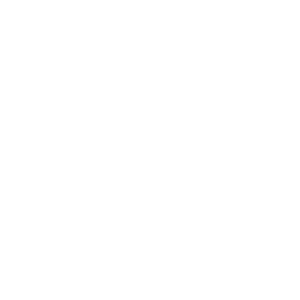 Bike Ride Fahrrad Bicyclette Each Day