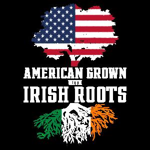 Ireland Geschenk