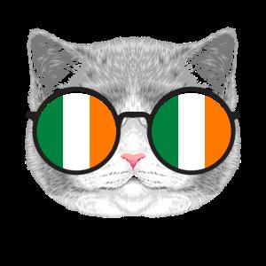 Irland Katze Sonnenbrille
