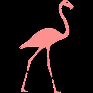 Flamingo mit Rahmen