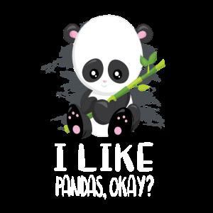 Panda Bären Pandabär Pandas Geschenk