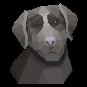 Süßer Labrador