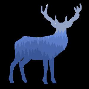 Hirsch im Wald / Naturmensch