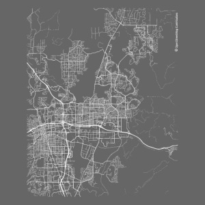 Minimal Sparks city map and streets