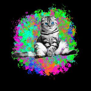 Katze balue Augen Bunt Kätzchen Geschenk