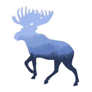 Elch / Wald im Winter