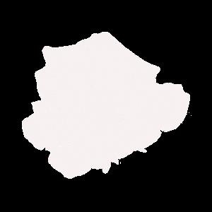 Weiße Rose - White Rose - Geschenkidee für jeden