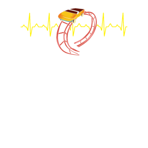 ROLLER COASTERS Roller Coaster Heartbeat
