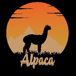 Alpaka in der Natur