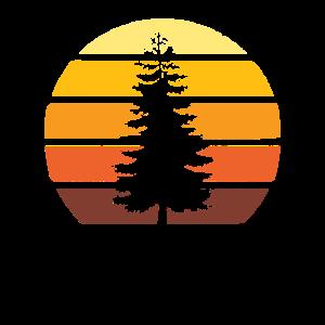 Retro Vintage Sun Sunset Pine Tree Forest Mountain