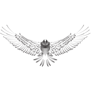 Wunderschöne Tiergrafik mit fliegendem Adler