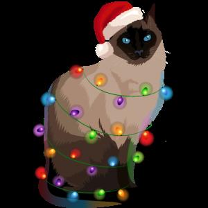 Siamkatze Katze Lichterkette Weihnachten