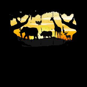 Safari, Sonnenuntergang