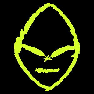 Ufo Ausserirdisch Gesicht