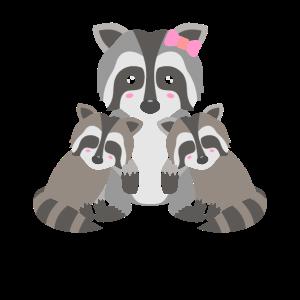 Waschbären Kuscheln Waschbärenfamilie