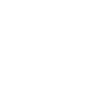 Schöner Schmetterling