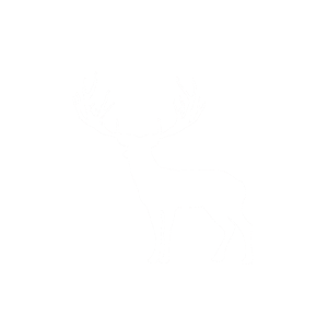 JGA Junggesellenabschied Bräutigam