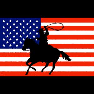 USA United States of America Wilder Westen Pferd