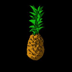Ananas Ananas