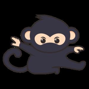 Ninja Äffchen