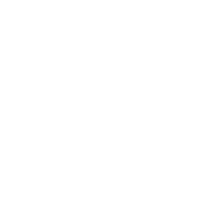 Tierportrait Koala schwarz-weiß (dunkle Produkte)