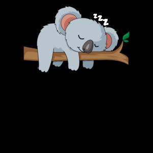 Koala Schlaf Faul süß Geschenk Geburtstag