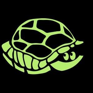 Tiermuschelschildkröte 2805