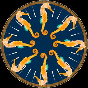 Seepferdchen im Kreis