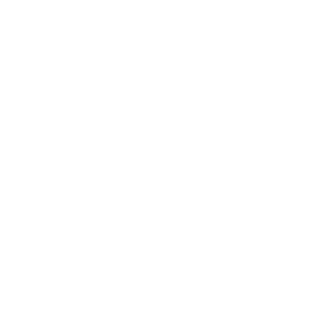 Eleganter Hammerhai