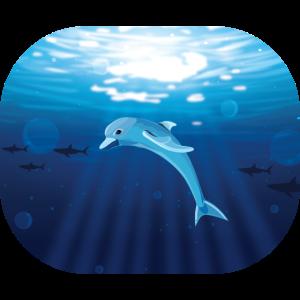 Delphin Tiefsee