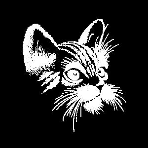 Katze handgezeichnet