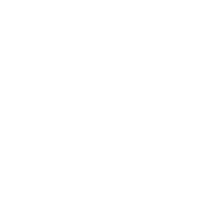 We Should All Be Feminists Feminist Statement